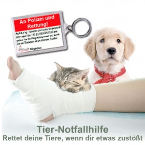 Tier-Notfallhilfe: Rettung und Versorgung von Hunden, Katzen...