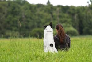 Haustiere machen glücklich und gesund