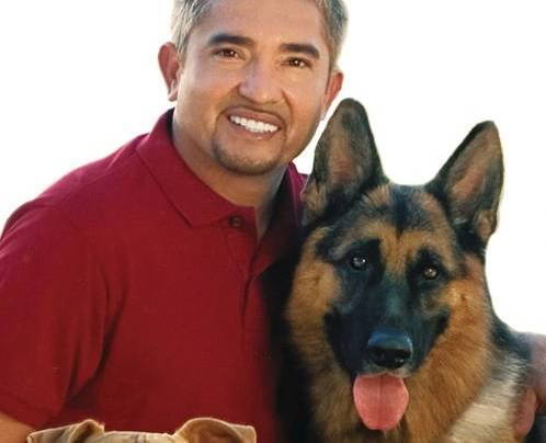 Cesar Millan - ein Hundetrainer in der Kritik