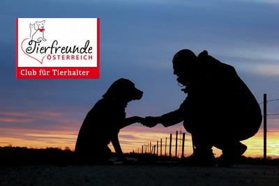 Haustiere-Beziehung-Freundschaft