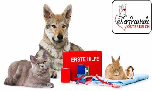 Erste-Hilfe-bei-Tieren-