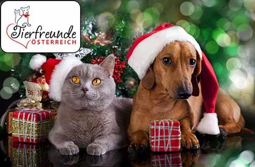 Tiere-sind-keine-Geschenke